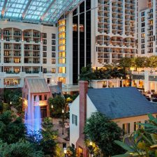 SummerFest themed events heat up the season at Gaylord Hotels