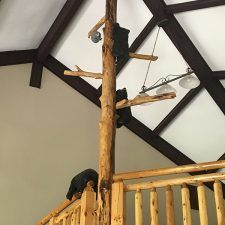 Global Connections Opens The Tree House at White Oak Lodge and Resort